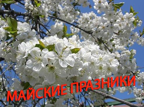 Праздники марте 2010 россии
